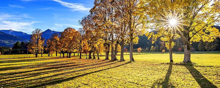 Goldener Herbst in Ramsau am Dachstein