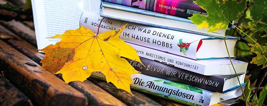 Bücher für den Herbst