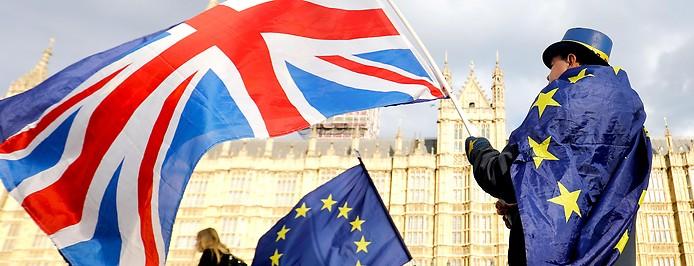 Brexit-Gegner mit Fahnen vor Houses of Parliament in London