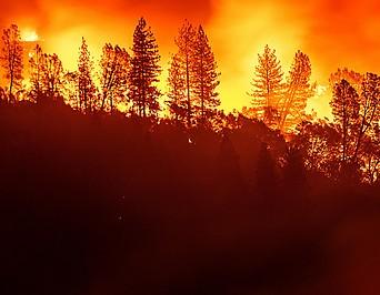 Waldbrand nahe Big Bend im US-Bundesstaat Kalifornien