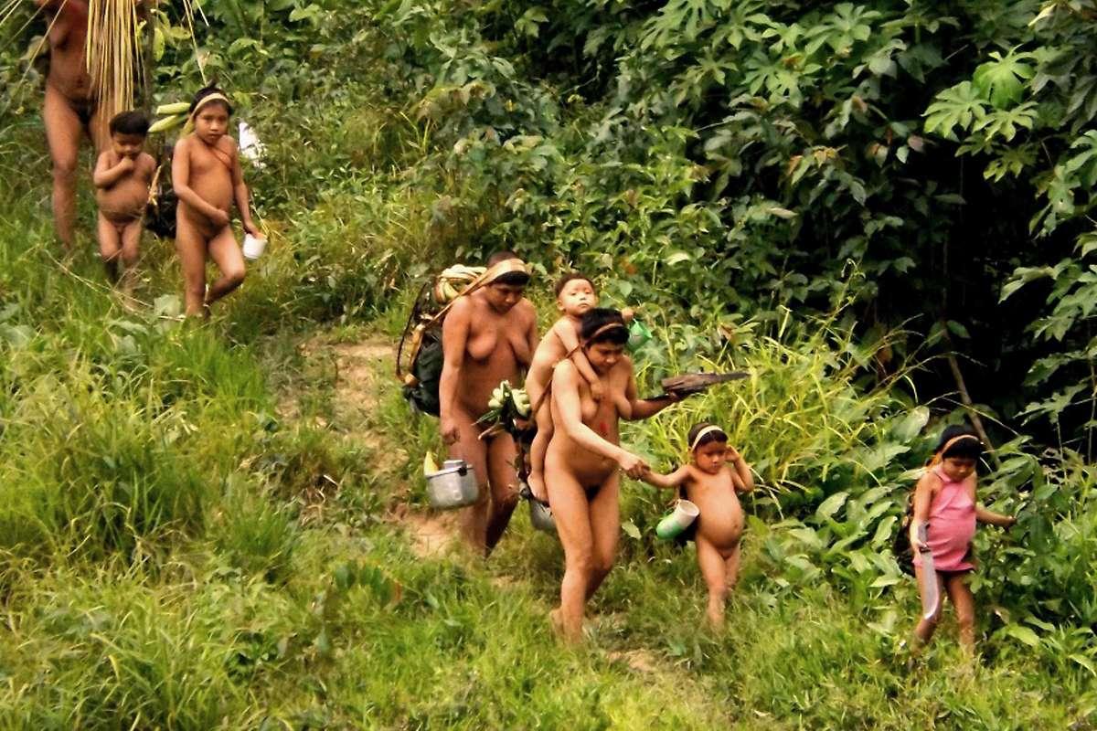 Expedition zu isoliertem Stamm in Brasilien begonnen