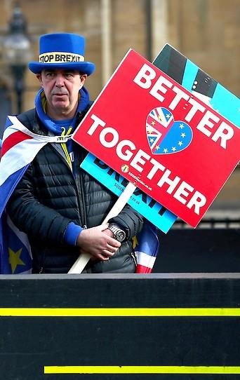 Brexit-Gegner