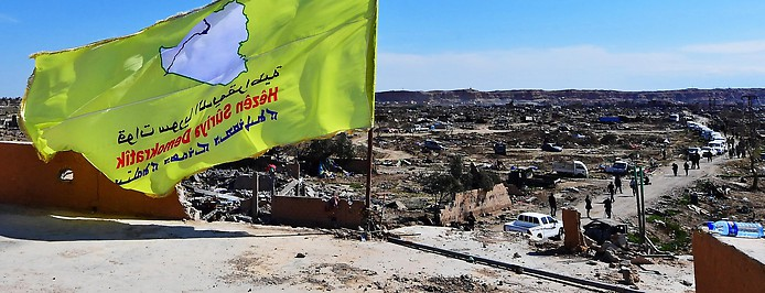 SDF-Flagge