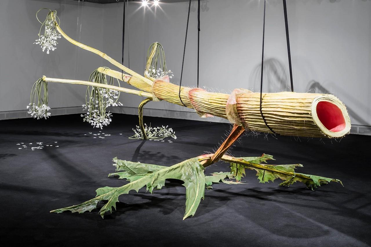 Pflanzenkunst: Helsinki Grüßt Die Venedig-Biennale