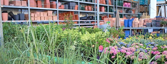 Blumen und Töpfe in einem Baumarkt