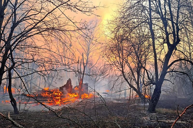 Waldbrand in der radioaktiv belasteten Sperrzone um den explodierten Atomreaktor des Kernkraftwerks Tschernobyl