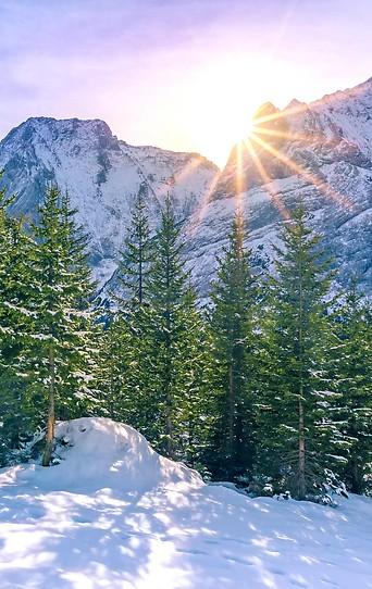 Nadelbäume vor Bergmassiv mit Sonne dahinter