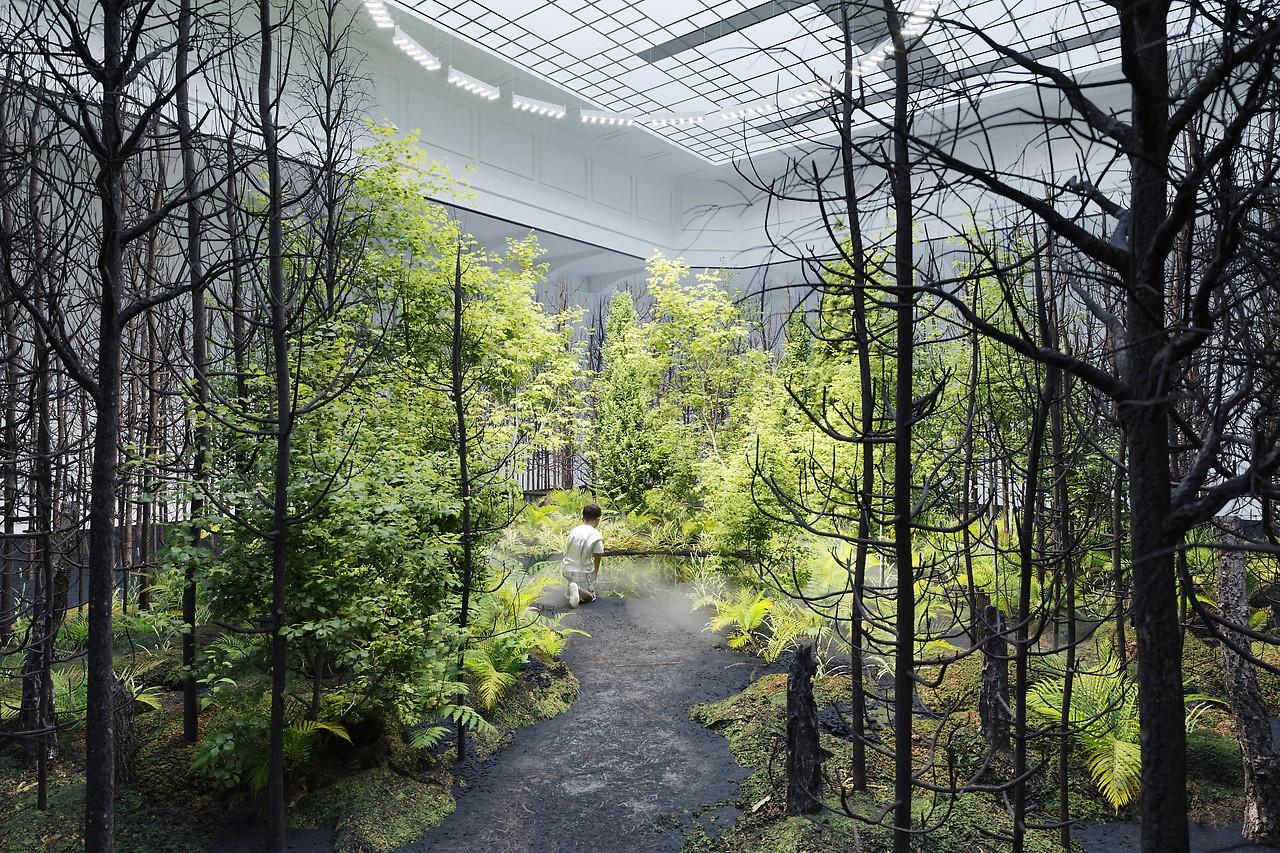 Exposición de arte de instalación inmersiva Invitación a la esperanza, 2021