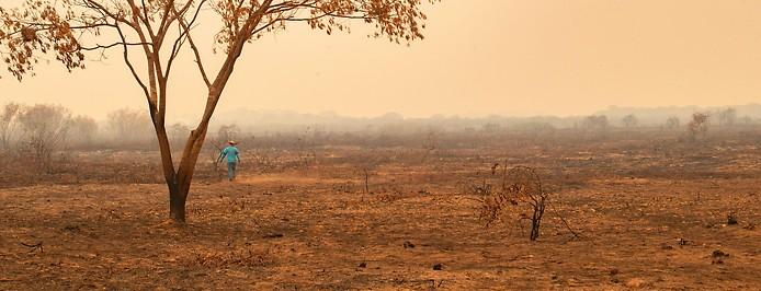 Trockenheit im Pantanal in Mato Grosso in Brasilien