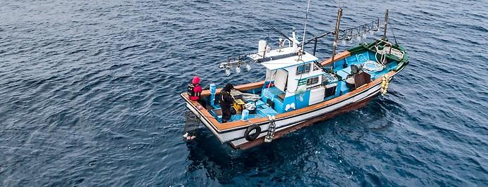 Fischerboot auf See